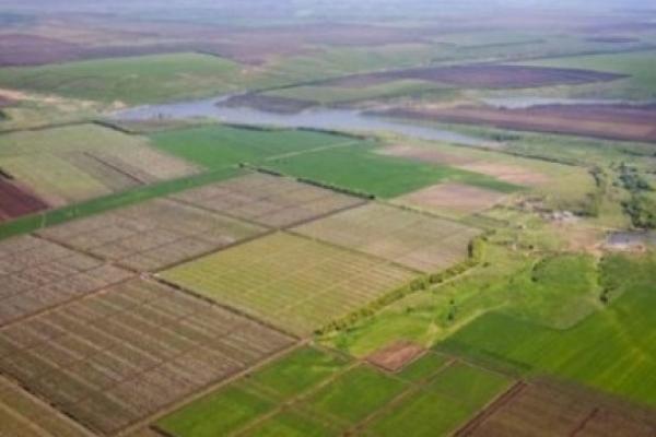 Українці зможуть безоплатно збільшувати свої ділянки до 2 га