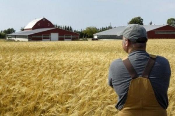 Рівнянам на замітку: хто з членів фермерського господарства не сплачує Єдиний соціальний внесок