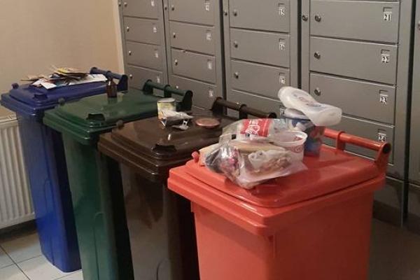 Свідомі рівняни розпочали сортувати сміття (Фото)