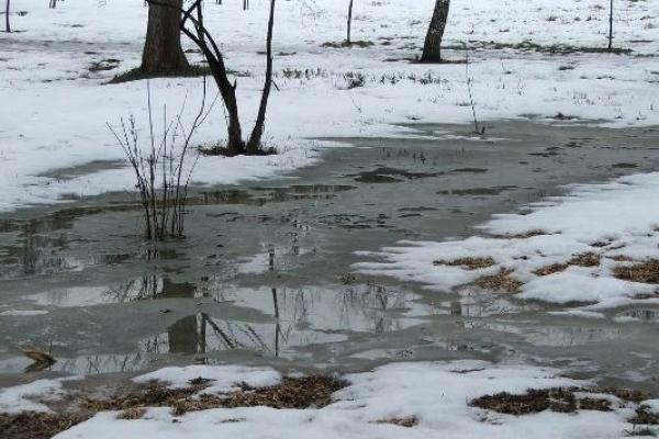 Погода на Рівненщині в суботу та неділю, 24-25 березня