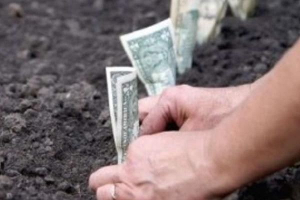 Громаді Рокитного повернули у власність ділянку вартістю 42 тисячі гривень