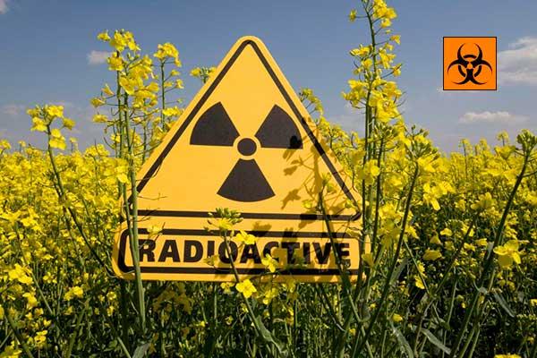 Стало відомо у якому районі на Рівненщині найвищий радіаційний фон