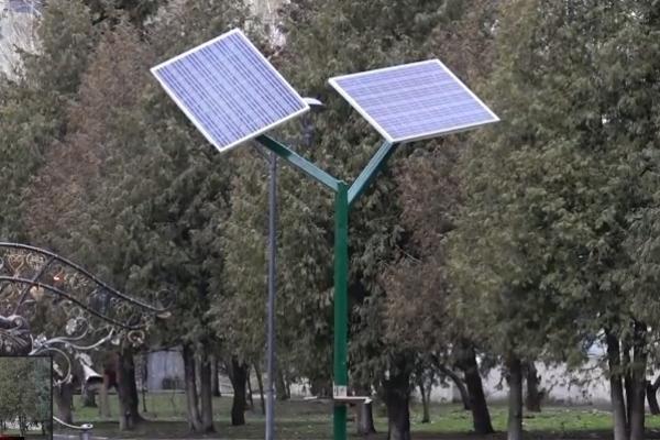 Як рівняни користуються «сонячними деревами» (Відео)