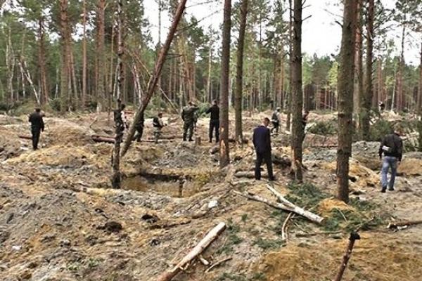 Президент Петро Порошенко назвав відповідальних за незаконний видобуток сонячного каменю на Рівненщині (Відеокоментар)
