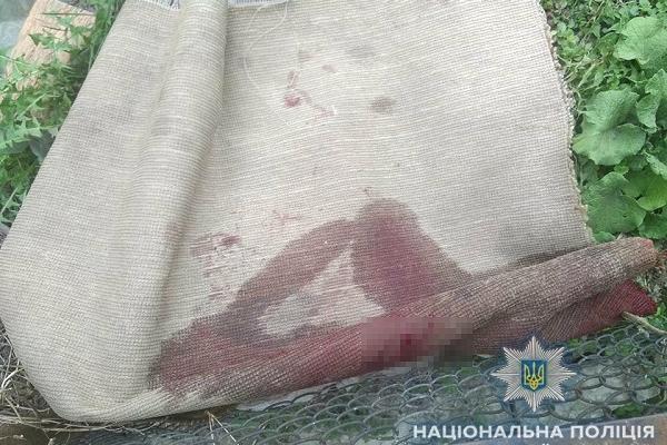 Рівненщина: жінка вбила співмешканця у пориві ревнощів (Фото)