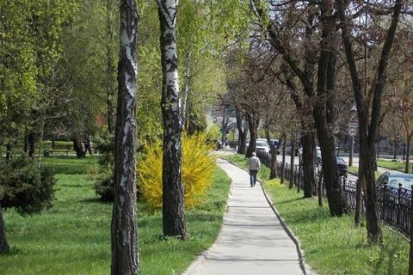 Sinoptik: Погода в Рівному та Рівненській області на вівторок, 24 квітня