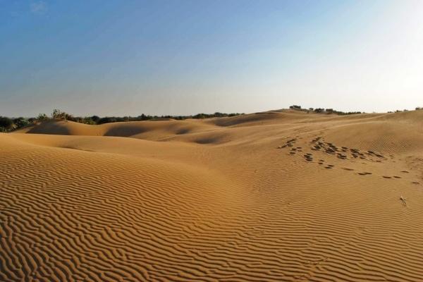 Степи й пустелі: такою може стати Україна за двадцять років