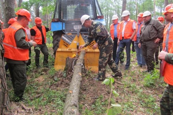 Лісівники Рівненщини проаналізували причин травматизму в лісовій галузі (Фото)