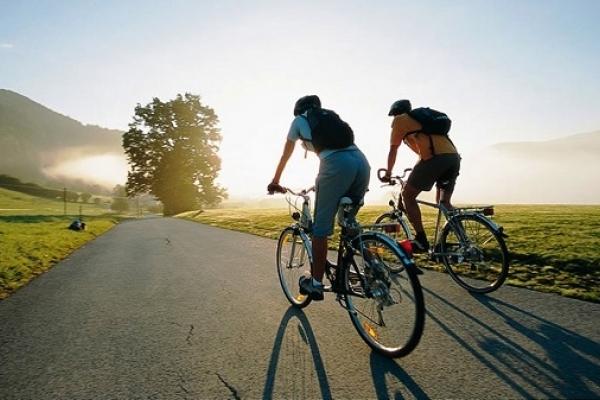 Рівненським велосипедистам на замітку: як безпечно їздити дорогами