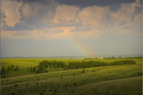 Sinoptik: Погода в Рівному та Рівненській області на четвер, 19 липня