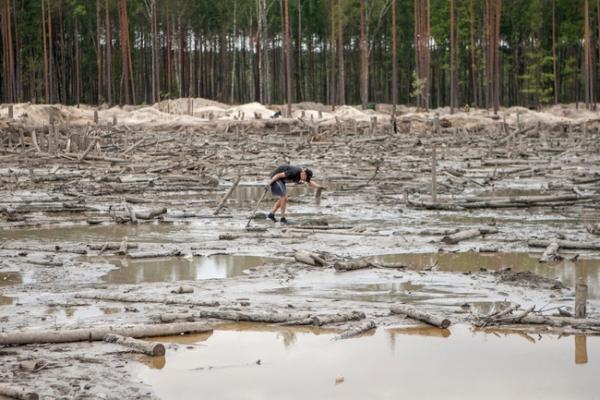 Підприємство претендує на видобуток бурштину ще на одній ділянці Рівненщини