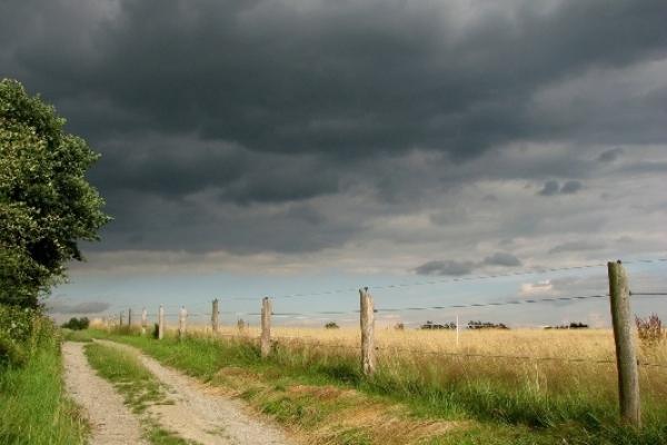 Sinoptik: Погода в Рівному та Рівненській області на четвер, 26 липня
