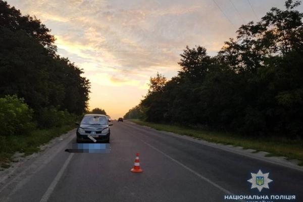 Поблизу Рівного під колесами авто загинув чоловік (Фото)