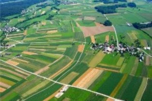 На Рівненщині в онлайн-режимі зареєстровано близько восьми тисяч земельних ділянок