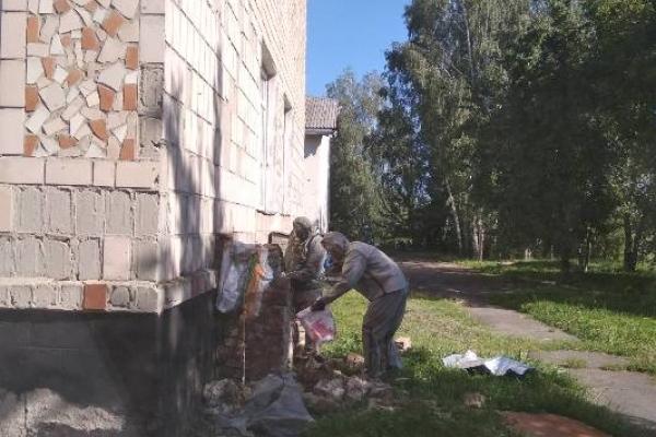 У Копиткові Корецького району рятували школу від шершнів
