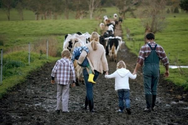 Сімейні фермерські господарства Рівненщини отримають офіційний статус