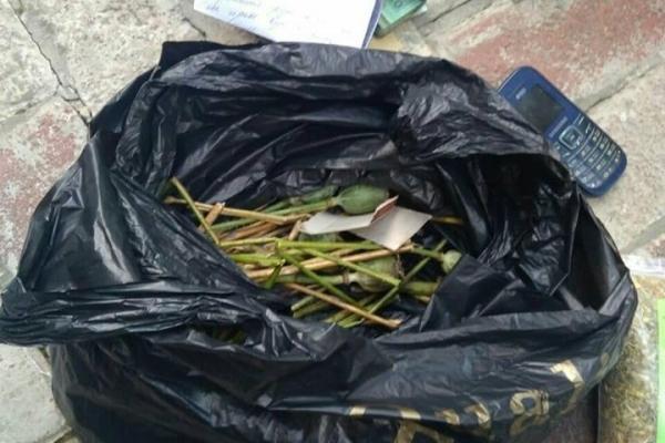 Макову соломку, коноплі та наркотичні речовини вилучили поліцейські у жителів Рівненщини