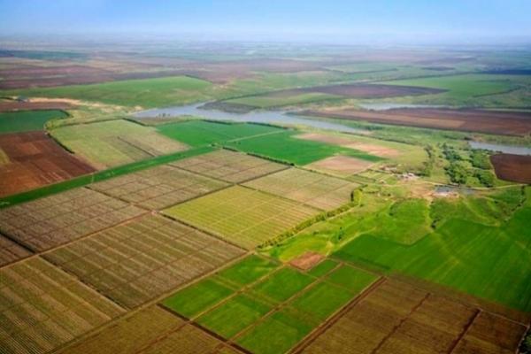Як обміняти земельний сертифікат на земельну частку