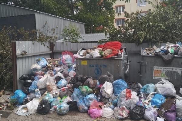 «Антиаромотерапія»: рівняни обурюються через гори сміття (Фото)