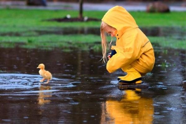 Рівненські синоптики найближчими днями прогнозують спеку та грози