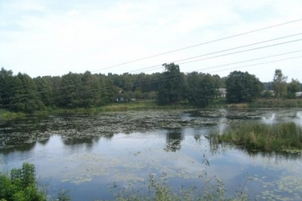 На Костопільщині загроза екологічної катастрофи
