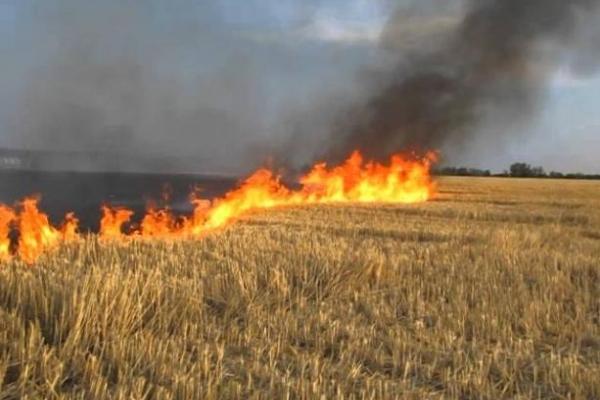Спалювання сухостою може призвести до масштабної пожежі!