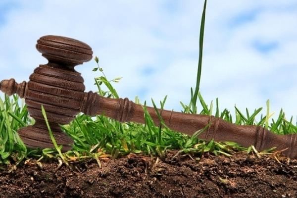 Бюджет сільради на Рівненщині зросте в рази завдяки праву оренди землі