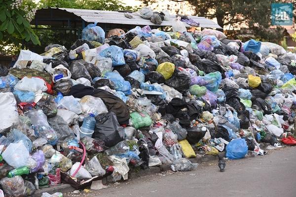 На Рівненщині знову викинули львівське сміття?