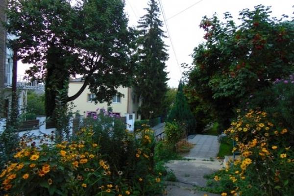 Sinoptik: Погода в Рівному та Рівненській області на п'ятницю, 21 вересня