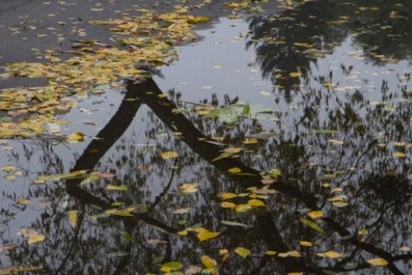 Sinoptik: Погода в Рівному та Рівненській області на четвер, 27 вересня