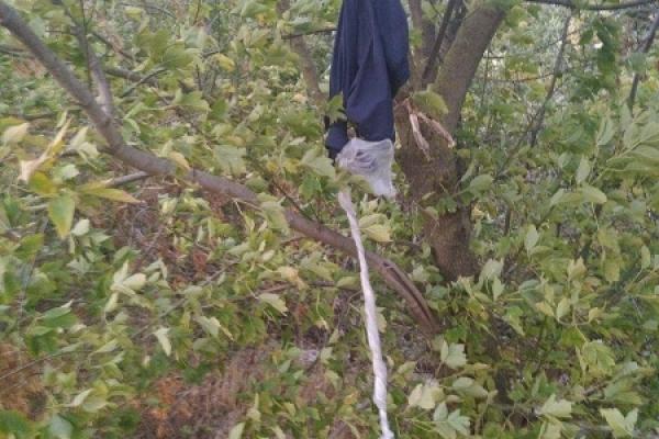 Житель Рівненщини вирішив покінчити з життям попід дорогою у лісі (Фото)