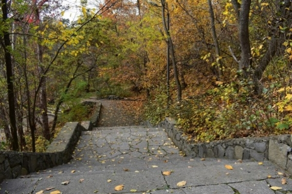 Sinoptik: Погода в Рівному та Рівненській області на четвер, 11 жовтня