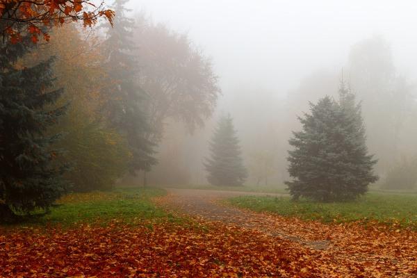 Погода у Рівному в неділю, 21-го жовтня