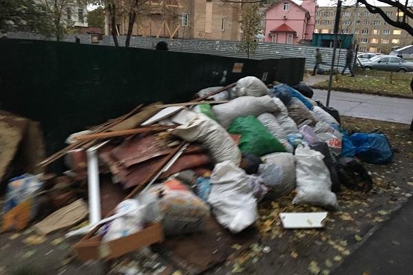 Поблизу дитячого садочка у Рівному вже декілька днів лежить сміття (Фотофакт)