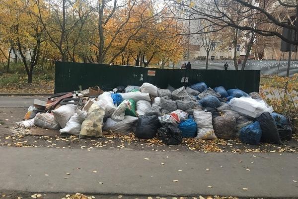 У Рівному вже два тижні не прибирають сміття (Фотофакт)