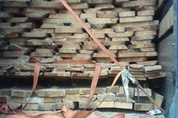 Лісоматеріали без відповідних дозвільних документів перевозили на Рівненщині (Фото)