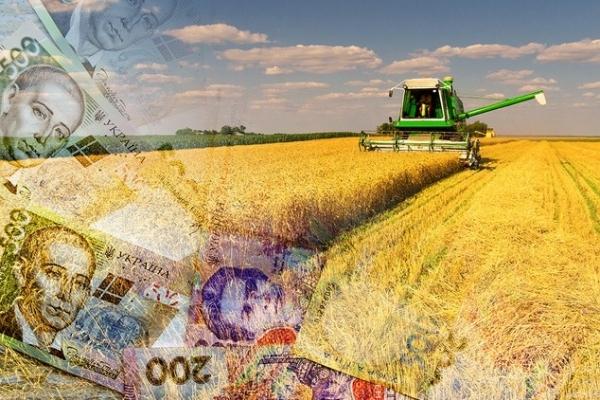 Фермери Рівненщини сплатили до місцевих бюджетів 85 мільйонів гривень
