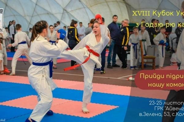 Вперше на Рівненщині - змагання з годзю-рю карате