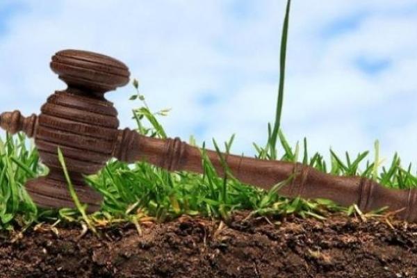Наповнювати місцеві бюджети Рівненщини допомагають земельні аукціони