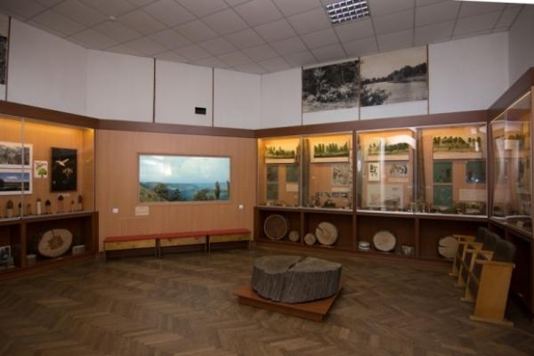 У Рівненському музеї нова виставка про видатних земляків