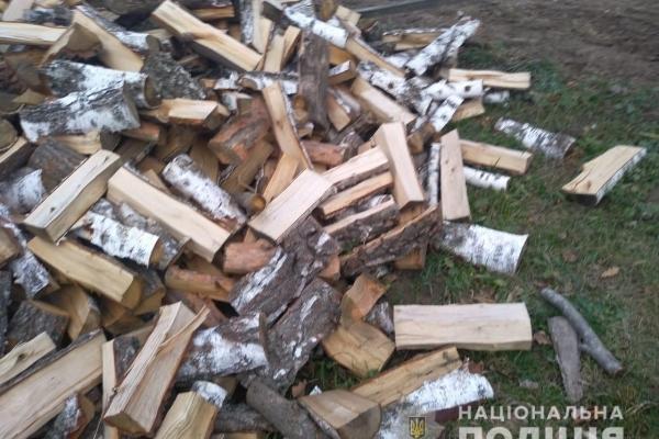 На Березнівщині крадуть дрова (Фото)