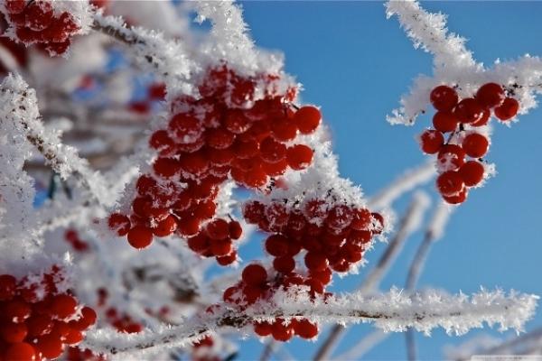 Sinoptik: Погода в Рівному та Рівненській області на п'ятницю, 23 листопада