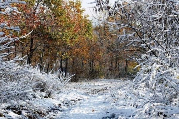 Sinoptik: Погода в Рівному та Рівненській області на вихідні, 1 і 2 грудня
