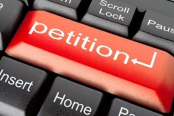 Чи дієвий механізм електронних петицій на Рівненщині?
