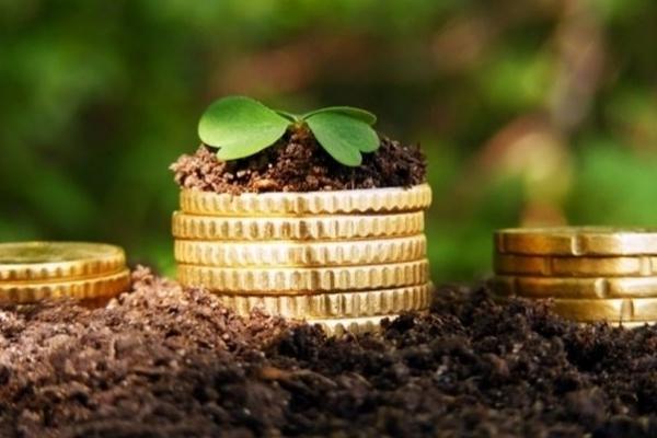 Орендар на Рівненщині не сплачував громаді за користування землею майже два роки