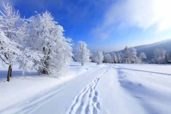 На вихідних на Рівненщині похолоднішає й засніжить (ВІДЕО)