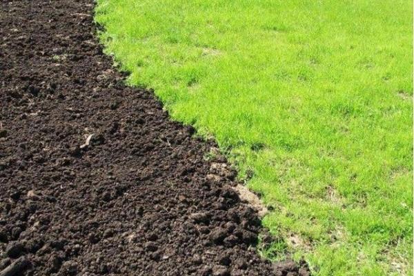 На Рівненщині ще 9-ть ОТГ отримали у власність сільськогосподарські землі