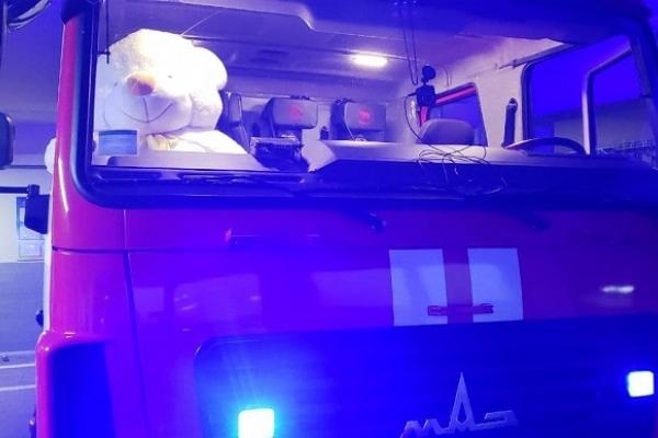 Сарненські рятувальники подарують велетенського ведмедя автору найкращого привітання з новорічними святами
