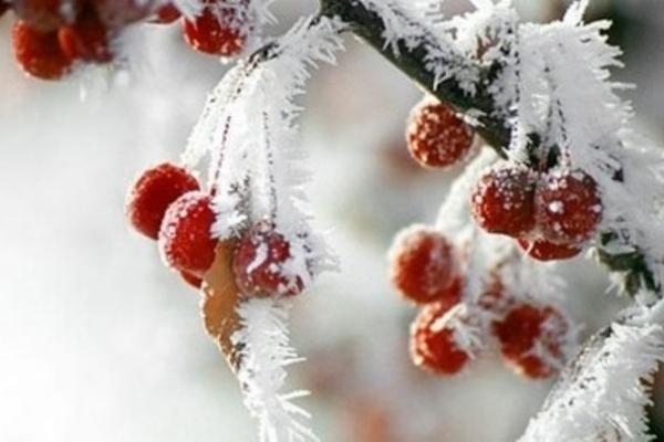 Sinoptik: Погода в Рівному та Рівненській області на середу, 9 січня