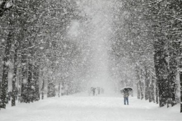 Погода на Рівненщині у п'ятницю, 25 січня